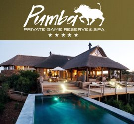 Pumba Private Game Reserve, accommodation in Grahamstown, Eastern Cape & Great Karoo, South Africa