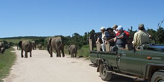 Holidays in Eastern Cape & Great Karoo, South Africa
