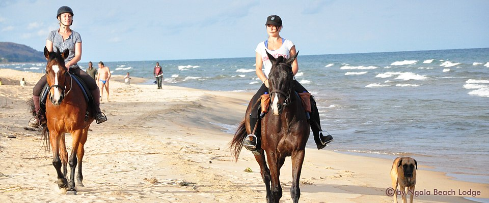 malawi-horse-riding-africa-adventure.jpg