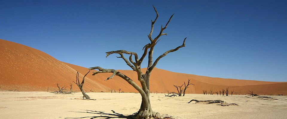 namibia-dead-vlei-gondwana-collection.jpg