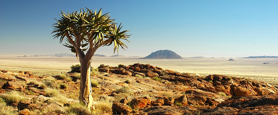 namibia-koekerboom-gondwana-collection.jpg