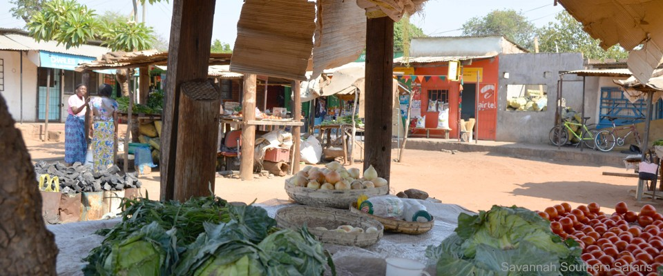 Traditional village market near Livingstone in Zambia