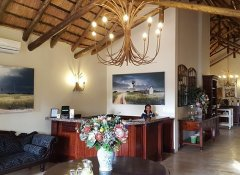 Black Eagle Hotel, Accommodation in Johannesburg