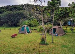Buccaneers Lodge & Backpackers, Accommodation in Chintsa