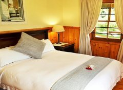 Forest Edge, Accommodation in Knysna