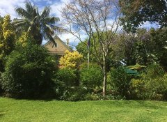 Gardens at Hacklewood Hill Country House  in Port Elizabeth