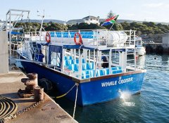 The second boat of Hermanus Whale Cruises in Overberg