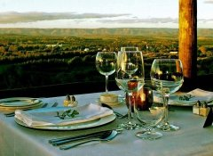 Gourmet dinner at Hitgeheim Country Lodge in Addo