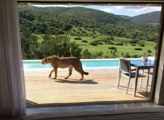 Hopewell Private Game Reserve and lodge in Colchester