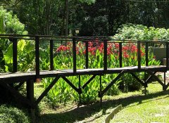 Lincoln Cottages, Accommodation in Pietermaritzburg