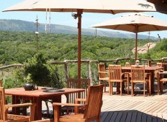 Restaurant with forest view at Pumba Private Game Reserve