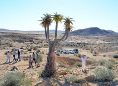 Richtersveld Tours in the Richtersveld in South Africa