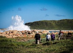 St Francis Hiking and coastal hikes in Cape St Francis