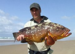 Salt water angling with St Lucia Deep Sea Game Fishing