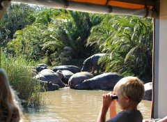 St Lucia Tours-Advantage Day Tours and Zululand Safaris