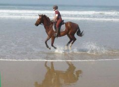 3 Sisters Horse Trails Activities in Port Alfred