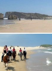 Beach riding in Eastern Cape on 3 Sisters Horse Trails