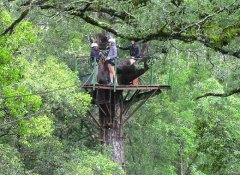 Tsitsikamma Canopy Tour, Activities in Storms River
