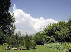 Wild Berry Guest Farm, Accommodation in Mooi River