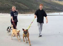 World Unite! volunteers in a Cape Town animal shelter